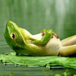 A Stresszcsökkentő Autogén Tréning